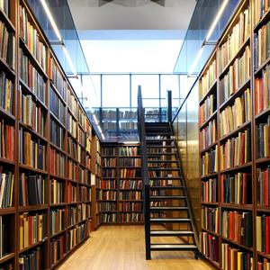 Библиотеки Райчихинска