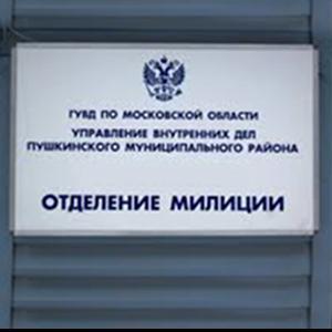 Отделения полиции Райчихинска